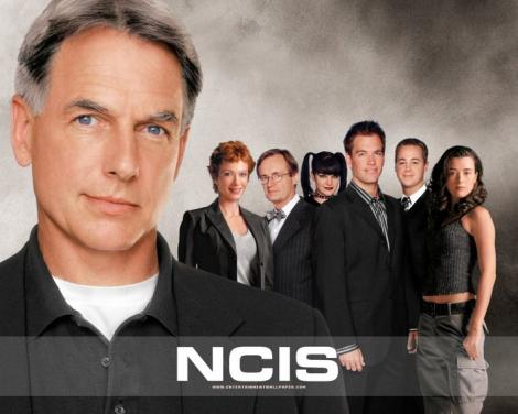 ncis pic 470x376 David Fisher, NCIS Star, Arrested for Assault