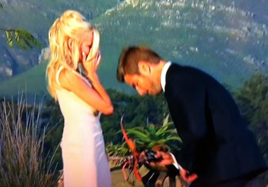 http://static.thehollywoodgossip.com/images/gallery/brad-proposes-to-emily_521x365.jpg
