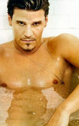David Boreanaz Hair Styles Gallery