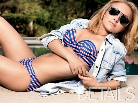 A bikini picture of Hayden Panettiere, and an appealing one at that.