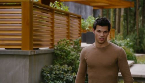 Jacob in Breaking Dawn Part 2