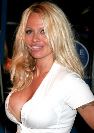 tommy lee and pamela anderson pictures. Pamela Anderson Cleavage