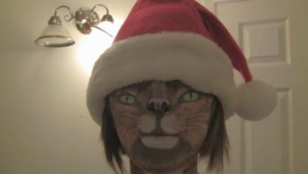 Cat in the Santa Hat