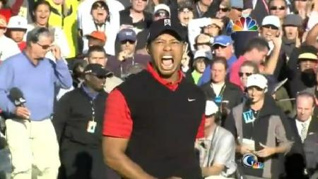 Tiger Woods Wins Chevron World Challenge